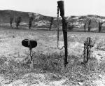 Korean War   U.S.  soldiers   Dead