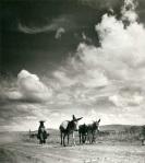Constance Stuart Larrabee Afrika Suku Foto Perempuan Fotografer Black & amp; amp; amp; 30-an 40-an putih 1930 1940 data Lampirkan id =