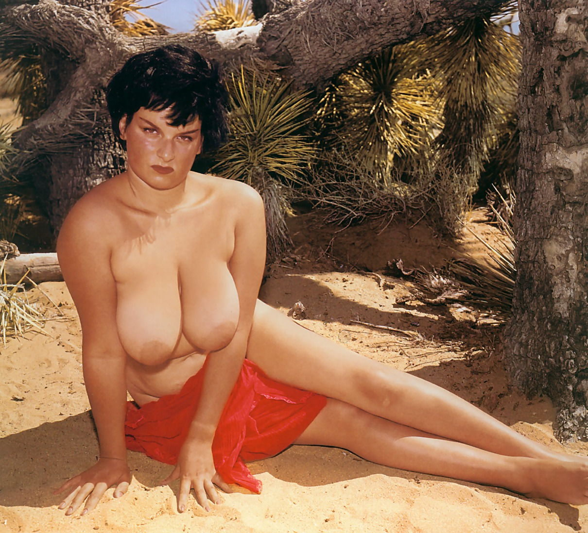 russ meyer s up big tits